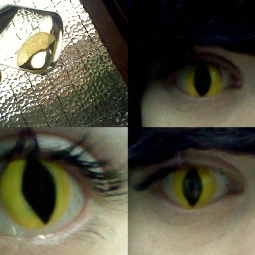 Eye Contacts For Halloween