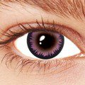 Feather Violet Contact Lenses