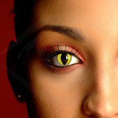 Spooky Yellow Cat Eye Contacts