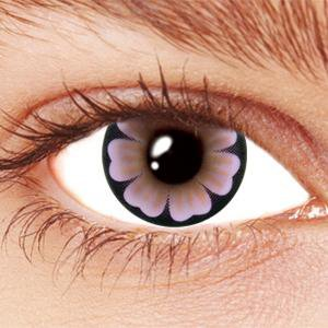 Violet Daisy Contact Lenses